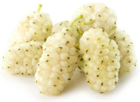 white-mulberry-banner