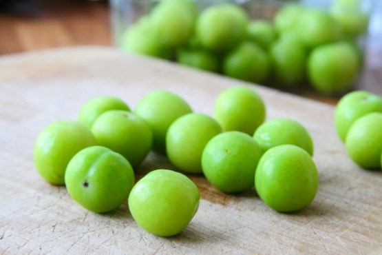 Persian green-plum